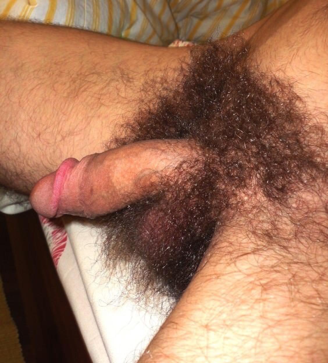 Волосатый лобок мужской