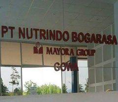 Lowongan Kerja PT Nutrindo Bogarasa (Mayora Group)