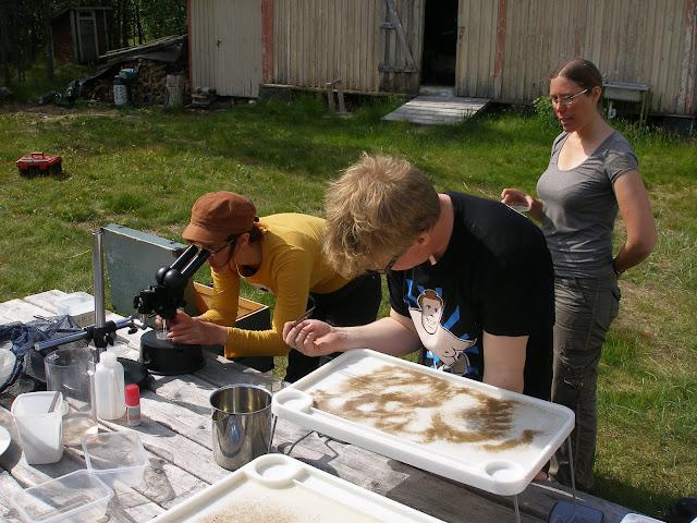 Kaksi henkilöä mikroskopoi pihalla ja kolmas katsoo