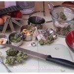 ricette-cucinare-la-cannabis
