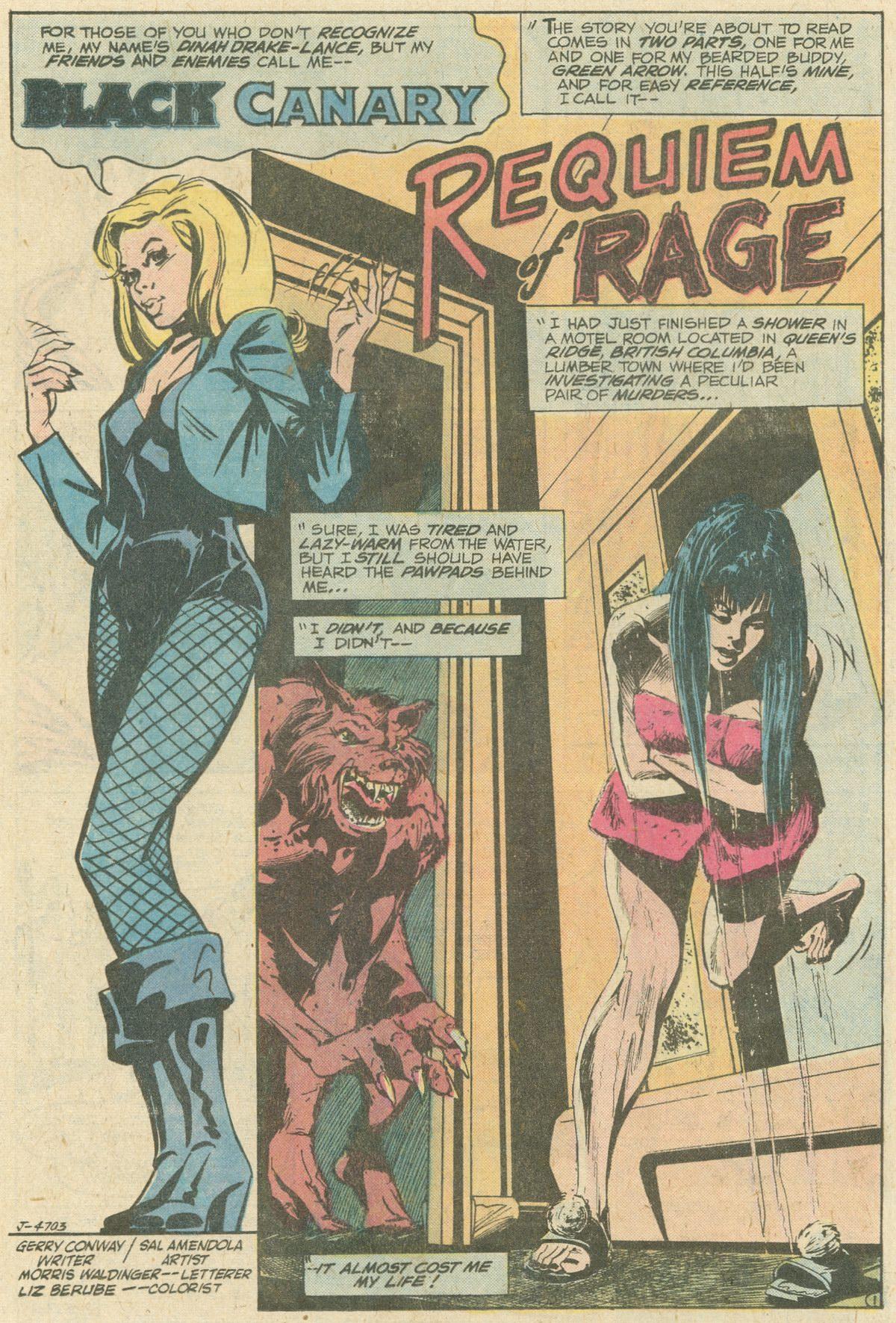 Read online World's Finest Comics comic -  Issue #247 - 28