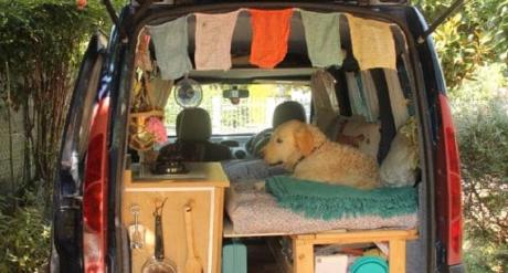 Kisah Impian Perempuan Ajak Anjing Kesayangan Keliling Dunia