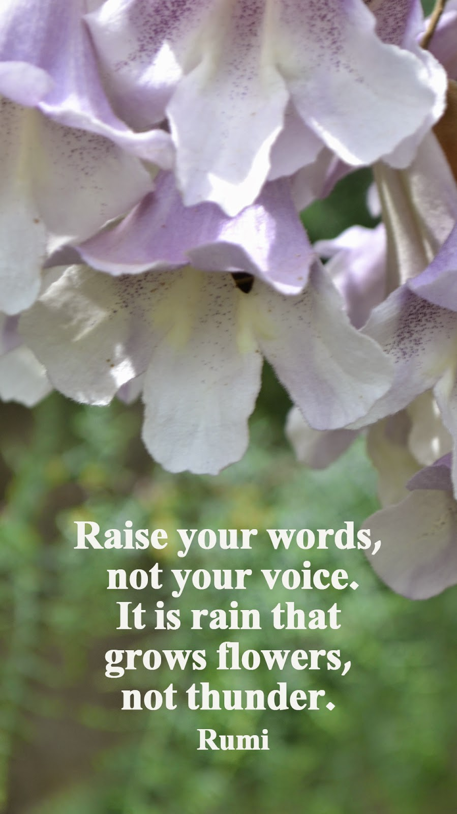 ... it's rain that grows flowers, not thunder - shewandersshefinds.com