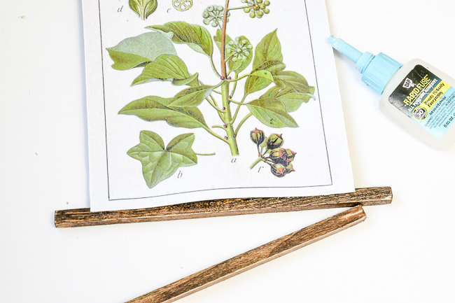 Gluing wood dowel to botanical printable