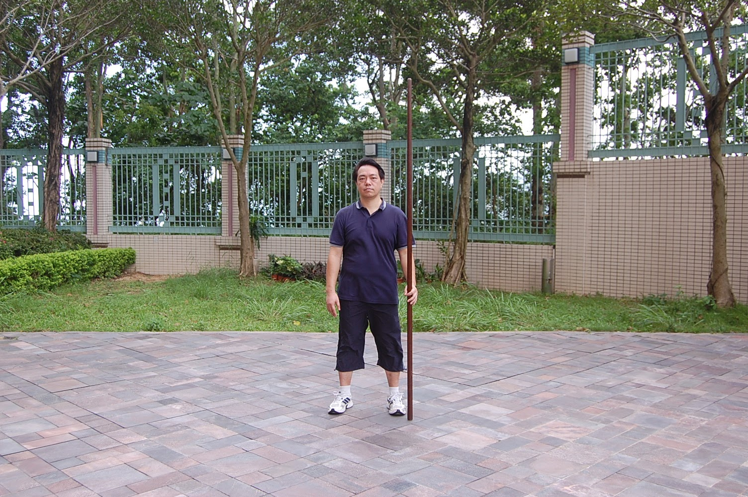 Tai Chi Spear Ready Style