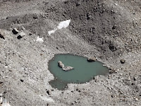 Lagunilla delante del glaciar