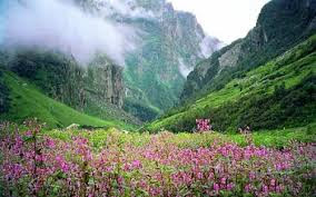 Nanda Devi and Florian Valley National Park