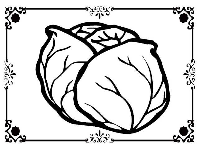 lettuce coloring sheets