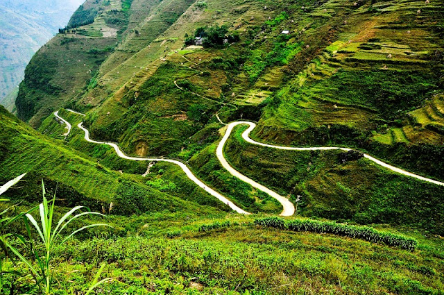 Ha Giang - A land of natural landscapes and special dishes 4