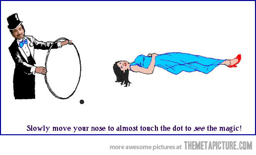 put your nose on the black dot. be amazed