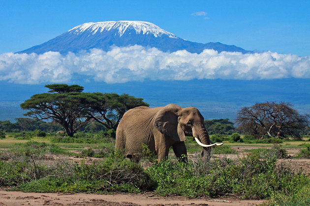 Tanzania Mount Kilimanjaro