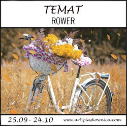 TEMAT - rower
