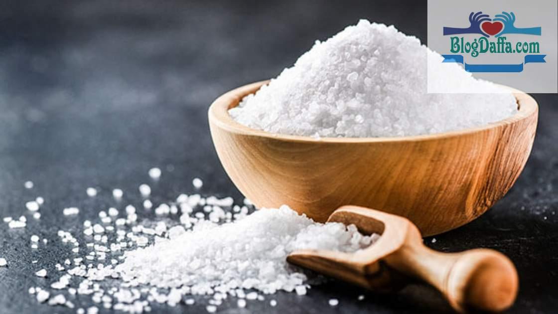 Manfaat garam untuk tanaman hias