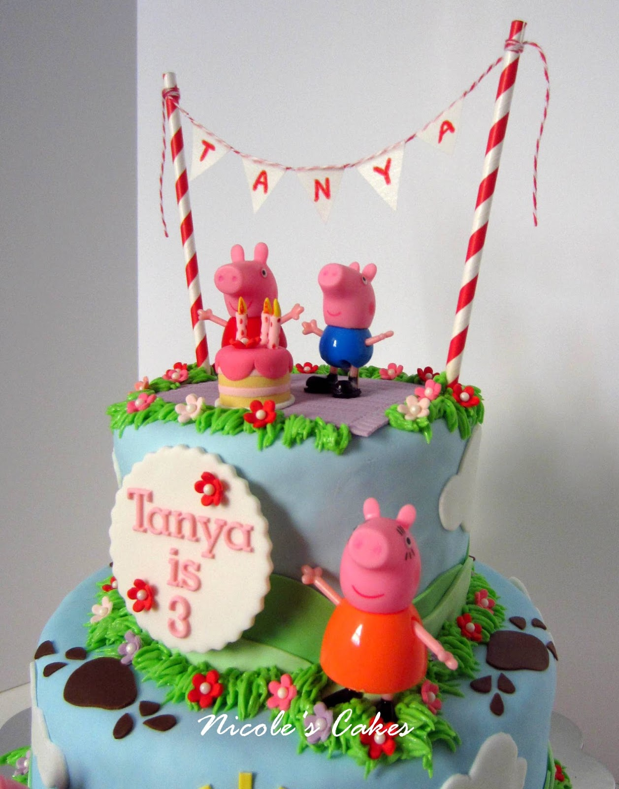 Confections Cakes Creations Peppa Pig Birthday Cake