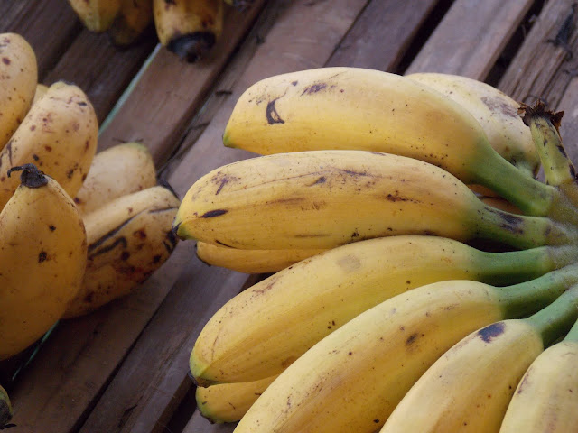 Yellow color Bananas