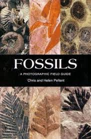 Fossils a Photographic Field Guide - Cover image