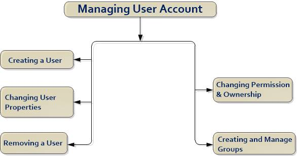 How to Mange User Account in Linux Hindi