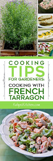 Cooking Tips for Gardeners: Cooking with French Tarragon found on KalynsKitchen.com