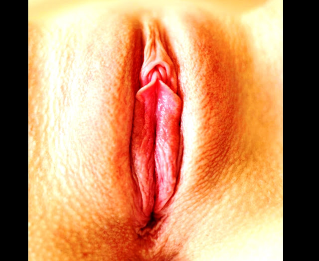 Голые лобки и ПИСЬКИ www.eroticaxxx.ru - Женщины и девушки показывают писечки и писи