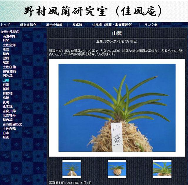 http://www.fuuran.jp/jiman_yamahiguma.html#%E5%B1%B1%E7%BE%86%E3%81%AE%E8%A9%B3%E7%B4%B0