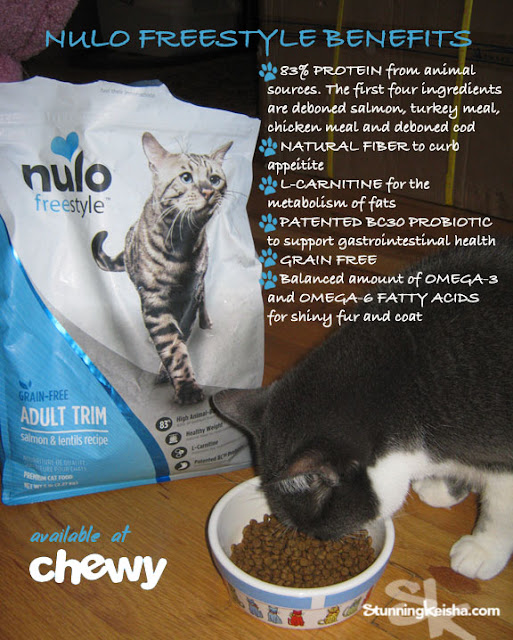 Fuel For the Athletic Cat #ChewyInfluencer
