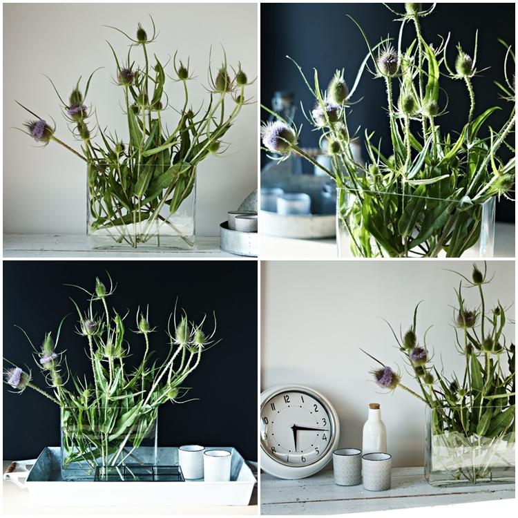 Blog + Fotografie by it's me! - Collage von Disteln mit unterschiedlicher Deko