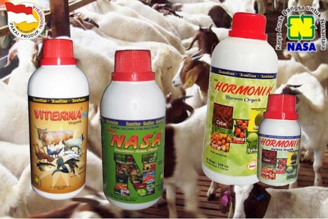 Produk Nasa Untuk Budidaya Ternak Kambing & Domba