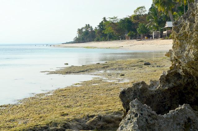 Pantai Lemo-Lemo aset potensial wisata bahari Bulukumba