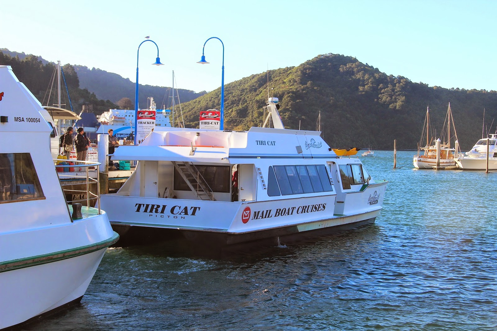 Mail boat Cruise Picton New Zealand