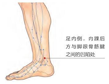 經絡祛百病:3穴位治療下肢痿痺、足跟痛(跟骨骨刺、跟骨骨質增生)