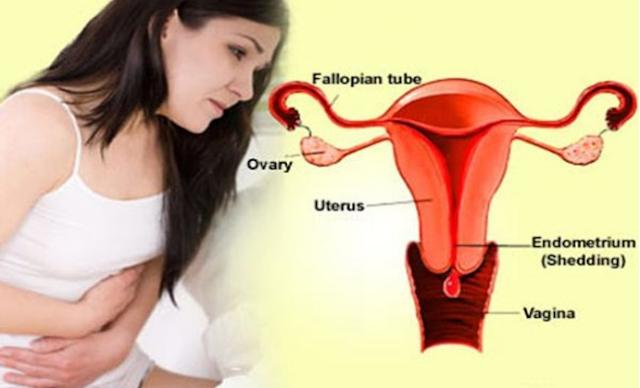 Obat Untuk Menghilangkan Penebalan Dinding Rahim