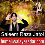 https://www.humaliwalyazadar.com/2018/09/saleem-raza-jatoi-nohay-2019.html