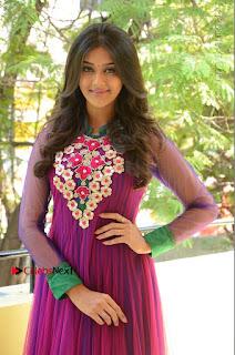 Actress Pooja Jhaveri Latest Stills in Purple Salwar Kameezt at Dwaraka Success Meet  0164.JPG