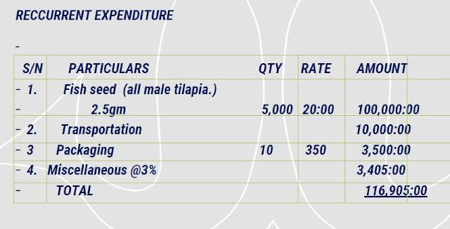 Feasibility Study Sample on Tilapia Fish via Good Business Plan Planning