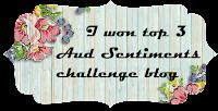 Top 3 Challenge #231 Bingo + A Sentiment