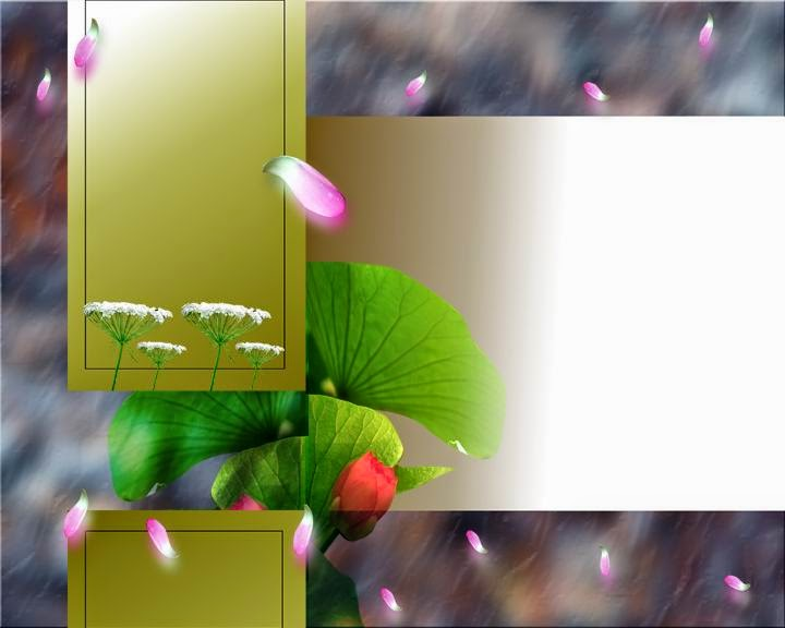 Do You Know Photoshop Wedding And Studio Background Colletions Part A 1