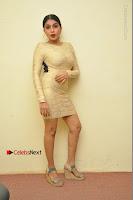 Actress Pooja Roshan Stills in Golden Short Dress at Box Movie Audio Launch  0129.JPG