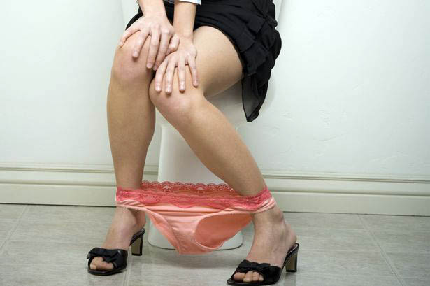 Cara Menggunakan Toilet Duduk