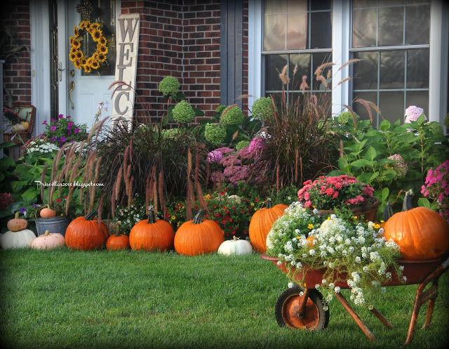 Pricilla's Pumpkins in Yard-Treasure Hunt Thursday- From My Front Porch To Yours