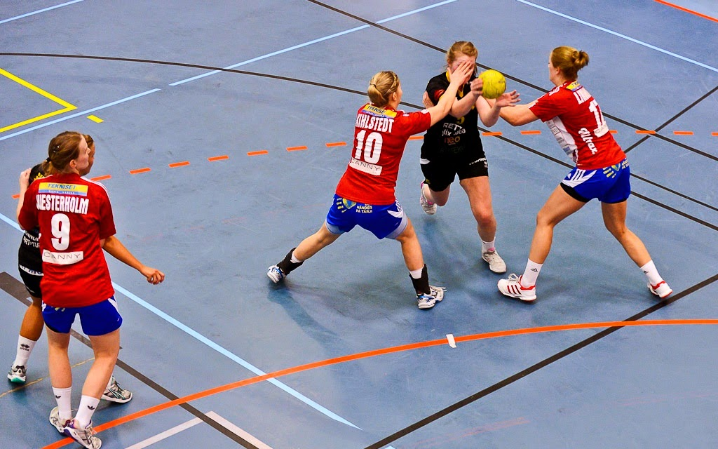 schwedische eishockey liga
