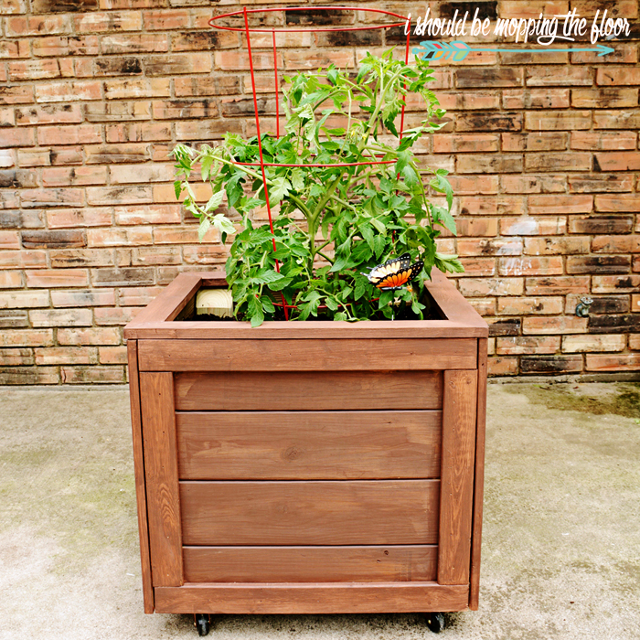 Diy Square Planter Box: I Should Be Mopping The Floor: DIY Planter Box With Wheels