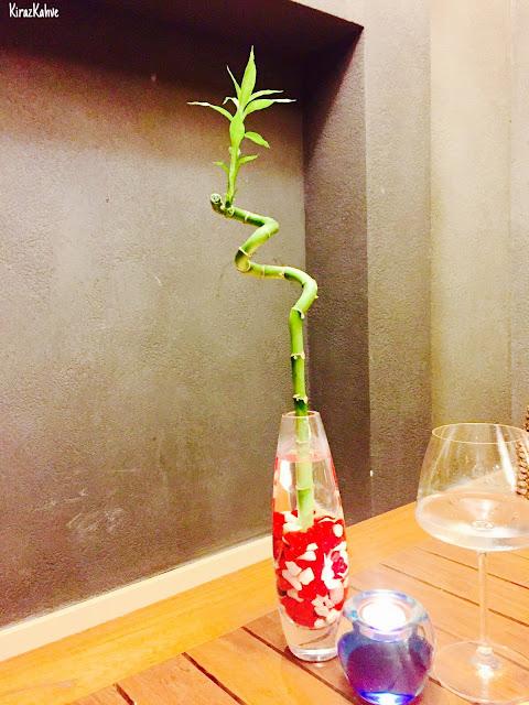 japon bitkisi