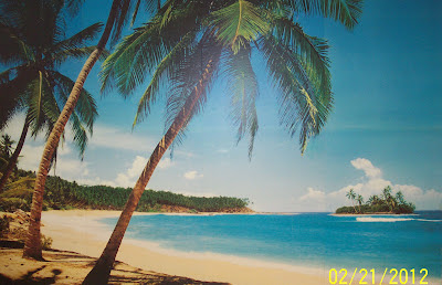 atlantic, bible prophecy, bomb, dc seal, dream, earthquake, end times, hawaii, island, israel, japan tsunami, oklahoma earthquake, revelation, senator tree, st thomas, usa, virgin island, volcano,