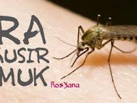 22 Cara Mengusir Nyamuk Secara Alami (100% Terbukti)