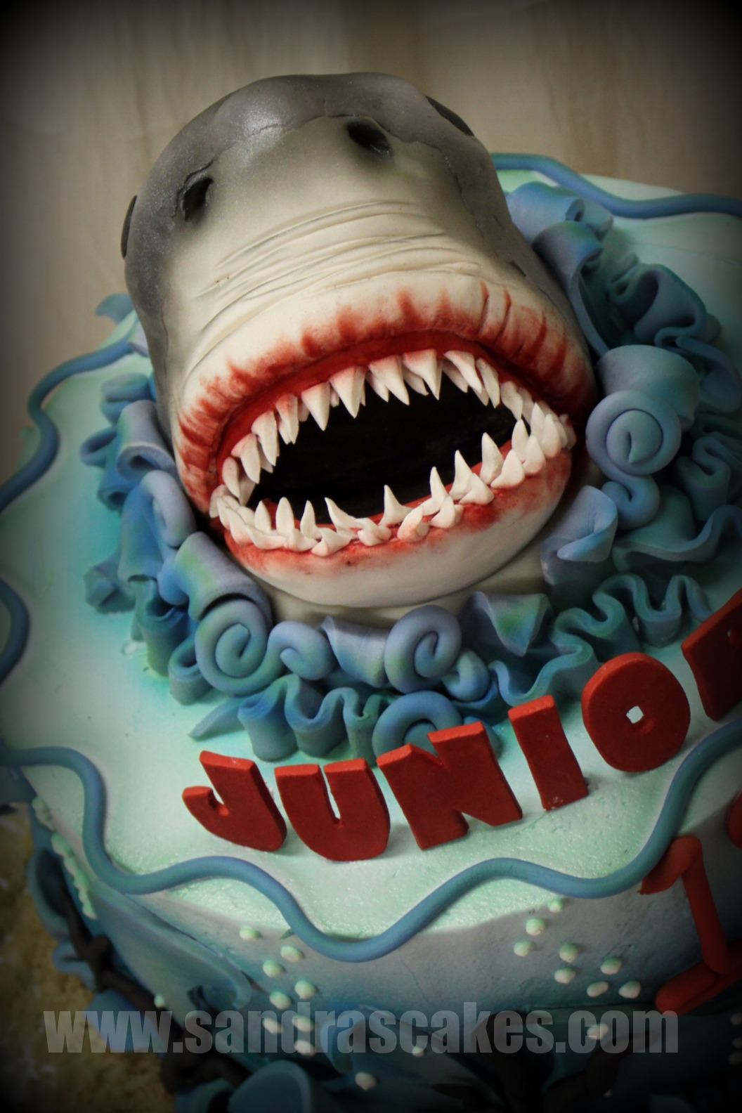 JAWS THEMED BIRTHDAY CAKE