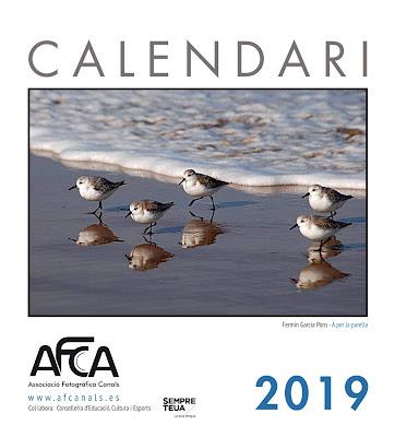 CALENDARI AFCA 2019