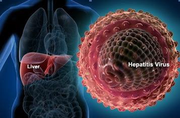 Hepatitis Virus