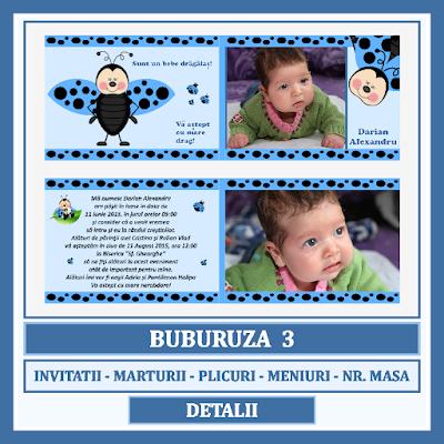 http://www.bebestudio11.com/2017/10/asortate-botez-tema-buburuza-3.html