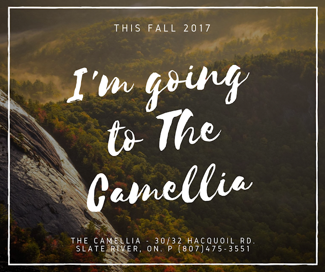 The Camellia Fall, Thunder Bay