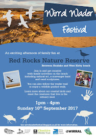 Wirral Wader Festival 2017